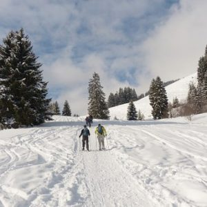 raquetas nieve - pzbaldetena